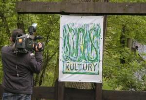 BlogStar: Las Kultury posadzony po raz drugi - BlogStar.pl