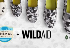 TOMS + WildAid