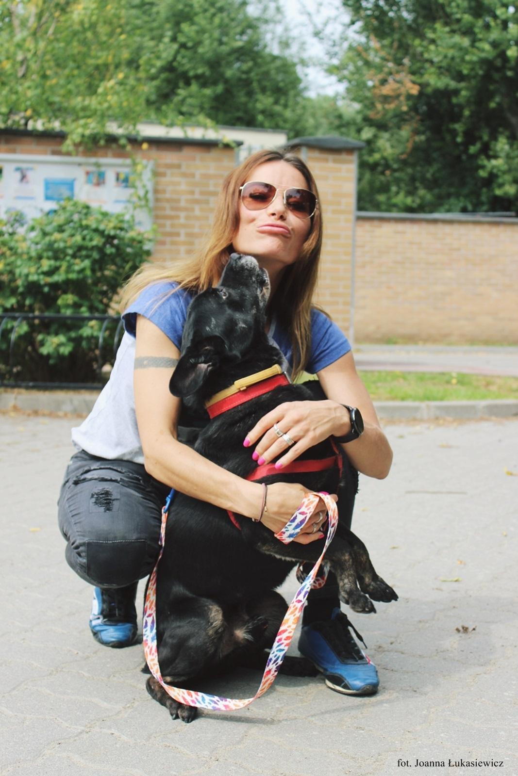 BlogStar: Karolina Pilarczyk zachęca do psich adopcji - BlogStar.pl
