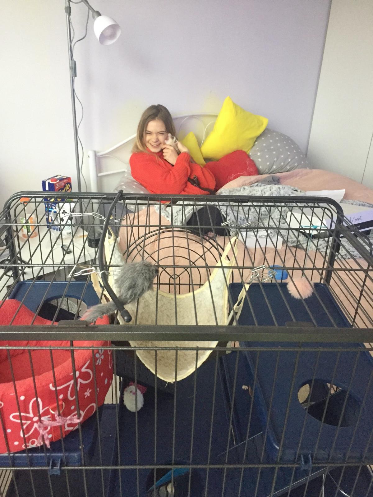 BlogStar: Julia Wróblewska urządza swoje mieszkanko - BlogStar.pl